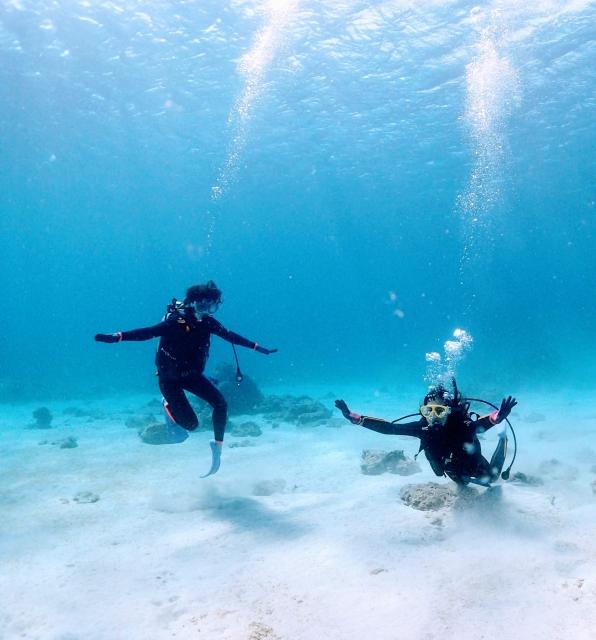 ダイビングをしている人達