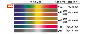 色の見え方 図