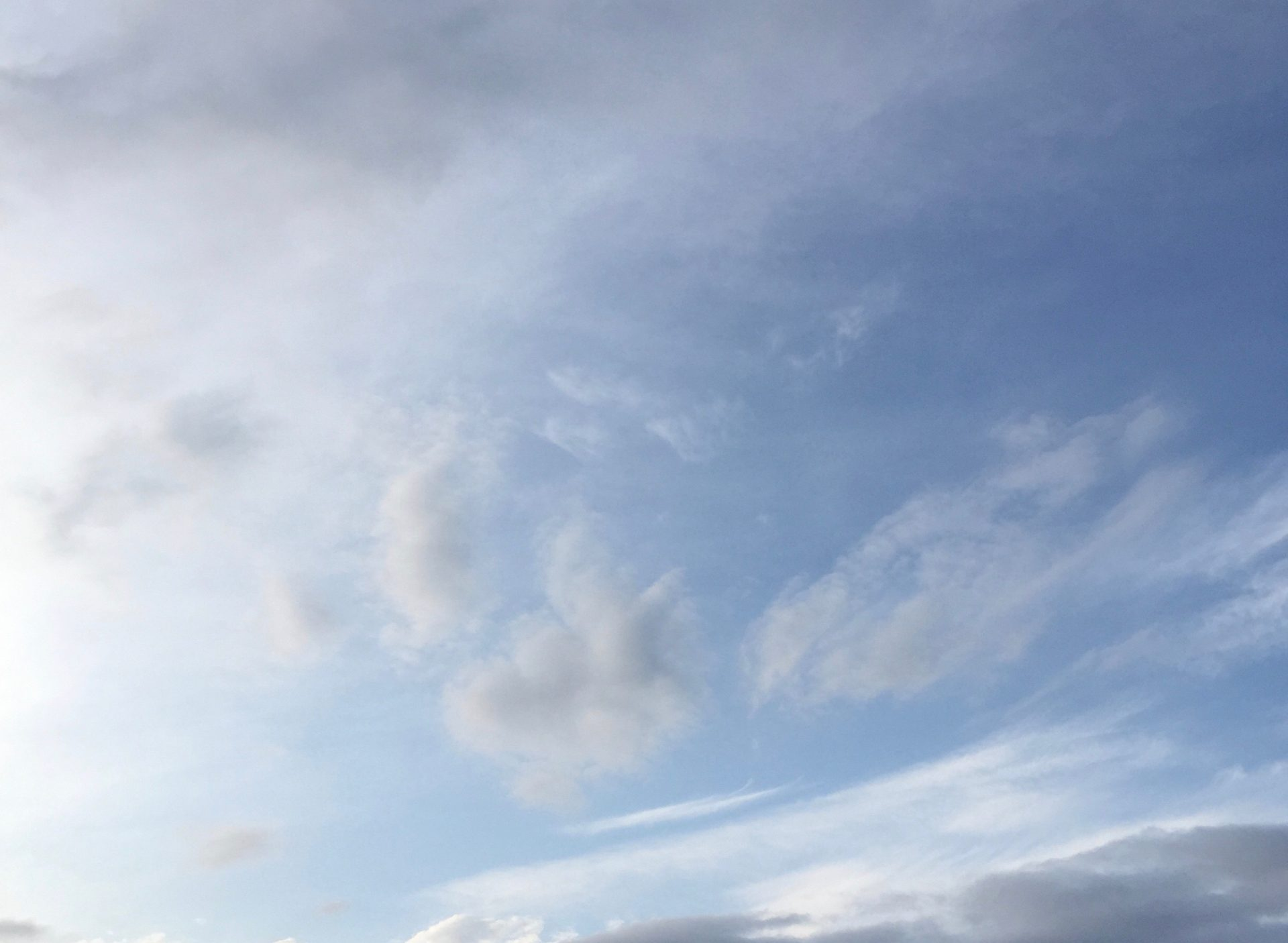 様々な雲が散る空