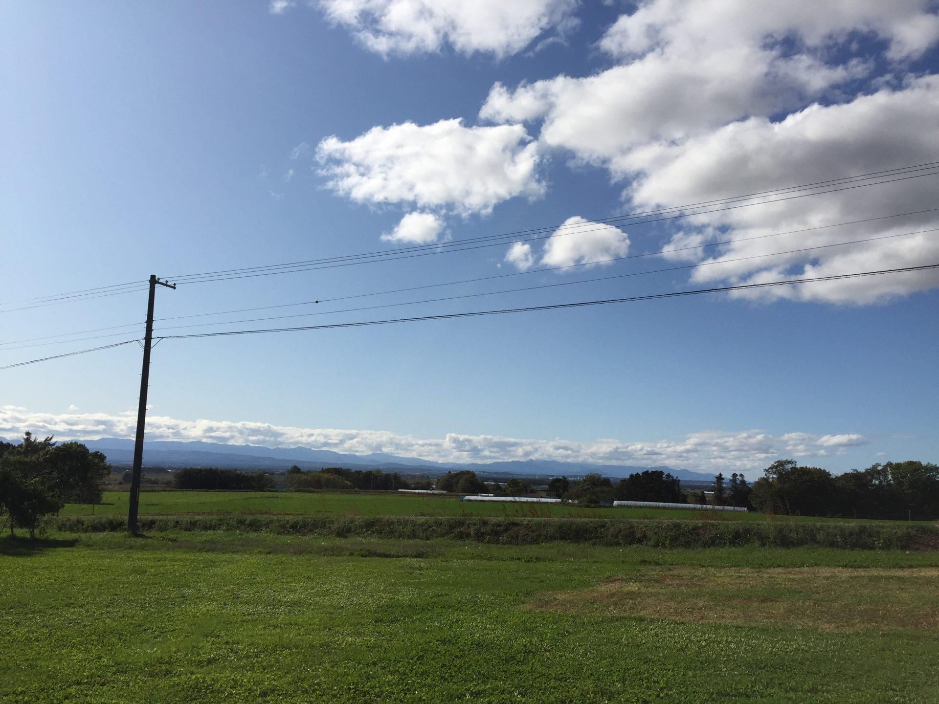 青く澄んだ空と緑